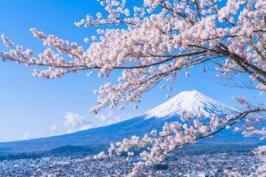 Spring break in japan