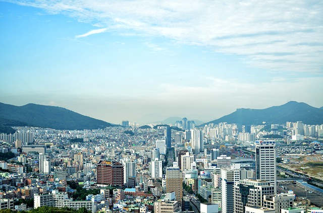 finance internship in korea