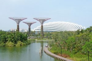 Environmental internship in singapore