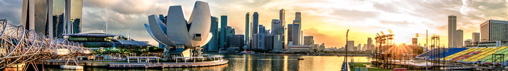 singapore package header