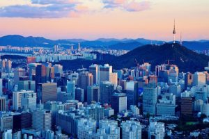 entrepreneurship internship in korea