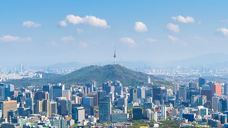 import export internship in korea