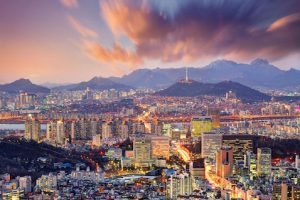 internship in korea